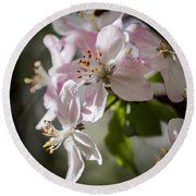 Apple Blossom Round Beach Towel by Ralf Kaiser