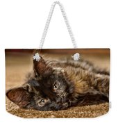 Coco Kitten Weekender Tote Bag by Trever Miller