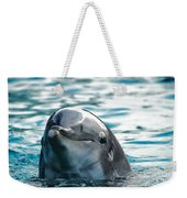Curious Dolphin Weekender Tote Bag by Mariola Bitner