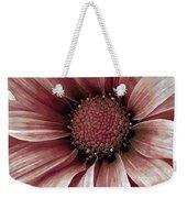 Daisy Daisy Blush Pink Weekender Tote Bag by Angelina Vick