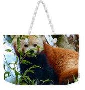 Red Panda Weekender Tote Bag by Trever Miller