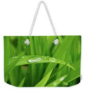 Rain Drops On Grass Weekender Tote Bag by Trever Miller