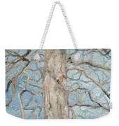 Winter Morning Weekender Tote Bag by Leah  Tomaino