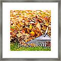 Fall Leaves With Rake Framed Print by Elena Elisseeva