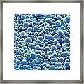 Plga Microspheres, Sem Framed Print by Science Photo Library