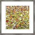 Autumn Framed Print by Les Cunliffe