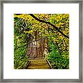 An Old Growth Douglass Fur In The Grove Of The Patriarches Mt Rainer National Park Framed Print by Jeff Swan