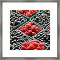 Berry Berry Nice Framed Print by Peter Tellone