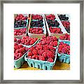 Bounty Of Berries Framed Print by Caitlyn  Grasso