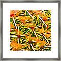 Cactus Pattern 2 Yellow Framed Print by Amy Vangsgard
