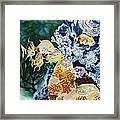 Carribean Currents Poster Framed Print by Dona Desjardins