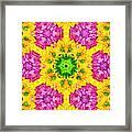 Crazy Daises - Spring Flowers - Bouquet - Gerber Daisy Wanna Be - Kaleidoscope 1 Framed Print by Andee Design
