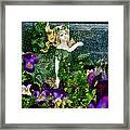 Fairy Dust  Framed Print by Steve Taylor