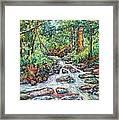 Fast Water Wildwood Park Framed Print by Kendall Kessler