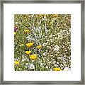 Field Of Flowers Framed Print by Artist and Photographer Laura Wrede