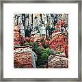 Gray And Orange Sedona Cliff Framed Print by Carol Groenen