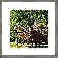 Harvest Time Framed Print by Alison Richardson-Douglas