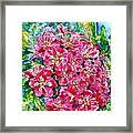 Hawthorn Blossom Framed Print by Zaira Dzhaubaeva