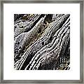 History Of Earth 11 Framed Print by Heiko Koehrer-Wagner