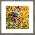 Lamp In The Autumn Leaves Framed Print by Michal Boubin