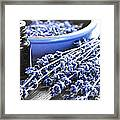 Lavender Herb And Essential Oil Framed Print by Elena Elisseeva