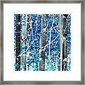 Lost In A Dream Framed Print by Don Schwartz