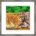 Lynx Framed Print by George Rossidis