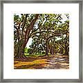 Memory Lane Oil Framed Print by Steve Harrington
