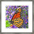 Monarch Butterfly Framed Print by Olivier Le Queinec