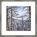 Mountain Landscape Framed Print by Elena Elisseeva