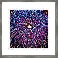 Ocean City Fireworks Framed Print by Lisa Merman Bender