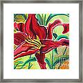 Oddly Twisted Framed Print by Shannan Peters