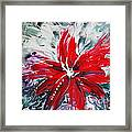 Red Beauty Framed Print by Teresa Wegrzyn