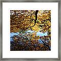 Reflections Framed Print by John Telfer