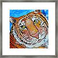 Richard Parker Framed Print by Debi Starr
