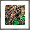 Rings Framed Print by Jack Zulli