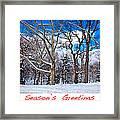 Season's Greetings Framed Print by Madeline Ellis