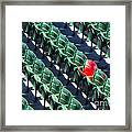 Seat No. 21 Framed Print by Jerry Fornarotto