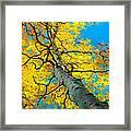 Sky High 3 Framed Print by Gary Kim