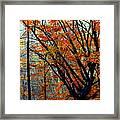 Song Of Autumn Framed Print by Karen Wiles