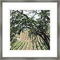 Sonoma Vineyards In The Sonoma California Wine Country 5d24619 Vertical Framed Print by Wingsdomain Art and Photography