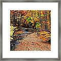 Spectrum Of Color Framed Print by Frozen in Time Fine Art Photography
