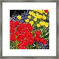Spring Sunshine Framed Print by Carol Groenen