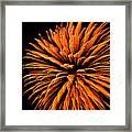 Starburst Iv Framed Print by Ronda Broatch