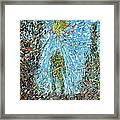The Drama Of The Earth Framed Print by Fabrizio Cassetta