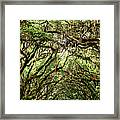 The Green Mile Savannah Ga Framed Print by William Dey