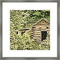 The Root Cellar Framed Print by Heather Applegate