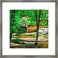 Tree Roots Framed Print by Optical Playground By MP Ray