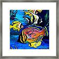 Tropical Fish Framed Print by Karon Melillo DeVega