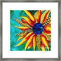 Urchin Framed Print by Shannan Peters